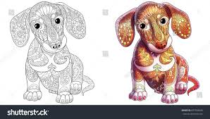 coloring book page dachshund puppy dog stock vector 657539446