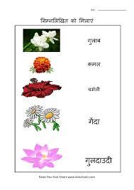 hindi flowers worksheet 2 kidschoolz