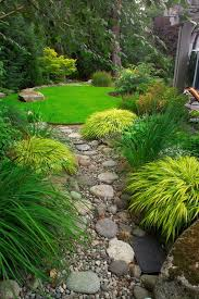 serene garden love the japanese forest grasses by back 2