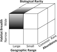 on the nature and significance of rarity in mineralogy american