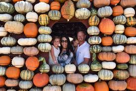 halloween activities in los angeles at home with the zierings