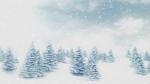 snow and christmas trees winter landscape hd 1080 seamless loop