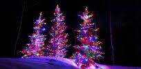 interesting ideas big bulb christmas lights large amazon com