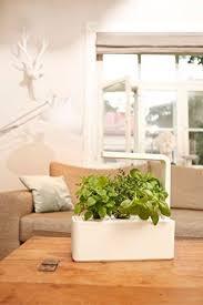 herb garden kit energy efficient led grow light indoor smart