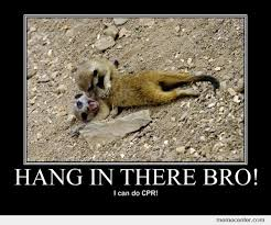 Hang In There Meme - hang in there bro by ben meme center