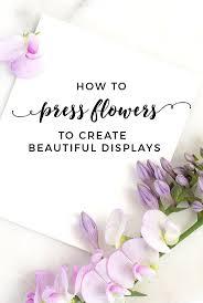 Drying Flowers In Books - best 25 press flowers ideas on pinterest pressing flowers