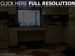 Accessible Kitchen Cabinets Accessible Kitchen Sink Boxmom Decoration
