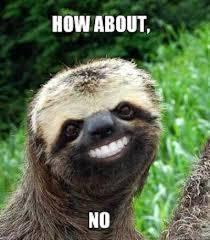 Angry Sloth Meme - no memes weneedfun