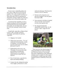 a guide to raised bed gardening in miami dade county florida