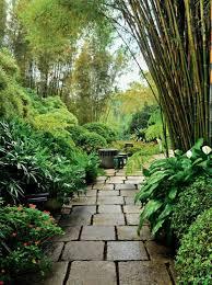 amazon com tropical gardens 42 dream gardens by leading