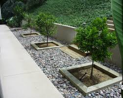 Backyard Ground Cover Ideas Rock Ground Covering Images By Creating Tree Boxes Then