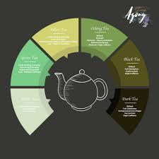 all different types of tea all from the same plant junes agony