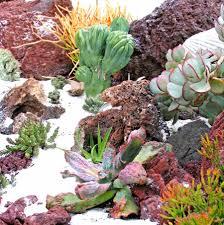 succulent landscape design i like the white sand idea but