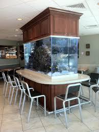 dining room table fish tank aquarium bohemefithome aquascaping pinterest aquariums