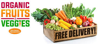 organic fruits and vegetables in chennai myrightbuy offers fresh