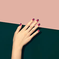 new french manicure trend pictures