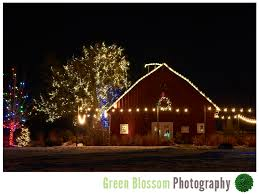 trail of lights denver trail of lights denver botanic gardens at chatfield intimate