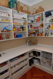 Kitchen Pantry Storage Ideas Dazzling Walk In Kitchen Pantry Designs With L Shaped Pantry