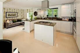 show home kitchen google search ideas for the house