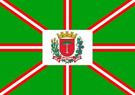 Brazil Flag Image Flag Of Curitiba Wikipedia