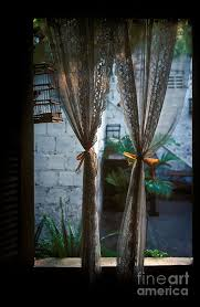 Bird Lace Curtains Lace Curtains And Birdcage In Open Window Photograph By Will