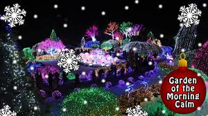 the garden of the morning calm christmas lights youtube