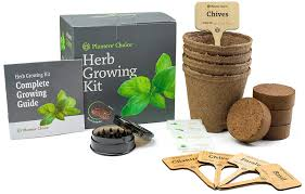 indoor herbs to grow indoor herb garden kits a great gardener gift family food garden