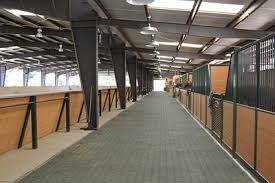 Best Horse Barn Designs Equine Facility U0026 Horse Barn Projects Equine Facility Design