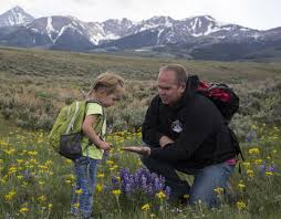 native plants of idaho programs natural resources native plant communities bureau of