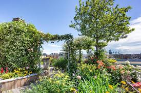 terrace gardening what is a terrace garden with pictures