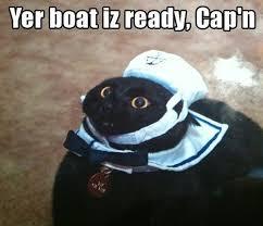 Cat Meme Boat - yer boat iz ready kaptn sailor cat memes and comics