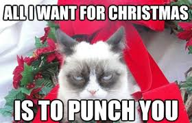 Cat Christmas Memes - all i want for christmas is to punch you xmas meme ugly