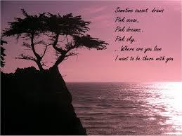 romantic quotes romantic quote romantic things pinterest pink ocean