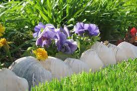 Gardens And Landscaping Ideas Gorgeous Landscape Designs And Modern Garden Edging Ideas Deavita