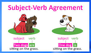 subject verb agreement free english grammar lessons and worksheets