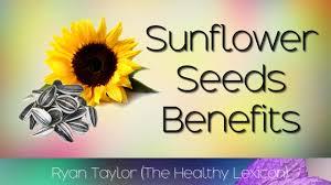 sunflower seeds benefits youtube
