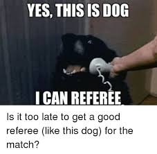 Yes This Is Dog Meme - hello yes this is dog via 9gagcom yes this is dog meme on me me