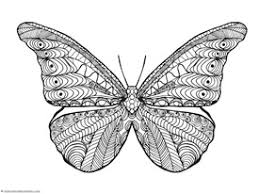 detailed butterfly coloring pages for adults butterfly coloring page coloring pages