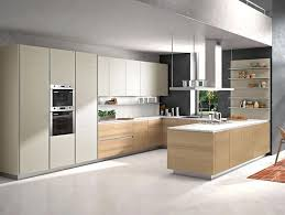 mixing kitchen cabinet wood colors modern chagne color kitchen cabinets mixed woodgrains buy chagne kitchen cabinet lacquer kitchen cabinet woodgrain kitchen cabinets product on