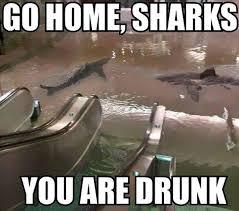 You Re Drunk Meme - 40 best exles of the go home you re drunk meme meme funny