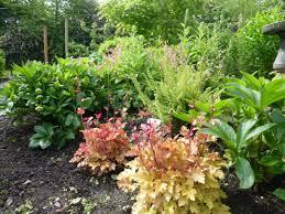 pnw native plants upcoming events washington county master gardeners washington