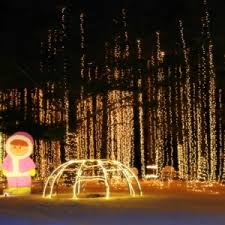 light show jellystone park in caledonia wi