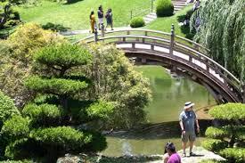 Huntington Botanical Gardens Pasadena by The Huntington Library Top 10 Things To See And Do The Family Savvy