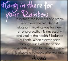Hang In There Meme - hang in there for your rainbow journey beyond divorce