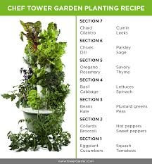When Should I Start Planting My Vegetable Garden by 28 Plants To Grow For A Chef Tower Garden