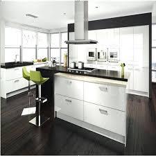Kitchen Cabinet Estimates Acrylic Kitchen Cabinets U2013 Fitbooster Me