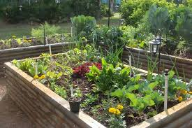how to plan vegetable gardening and flower boundless table ideas