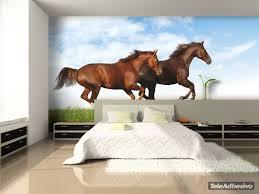 papier peint chevaux pour chambre les 67 meilleures images du tableau papier peint vinyle animaux