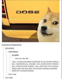 Top Doge Memes - doge meme