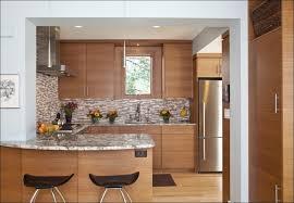 fresh horizontal kitchen cabinets taste